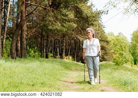 Cheerful Senior Woman Walking In Pine Forest With Nordic Walking Sticks, Sunny Summer Day. Elderly W