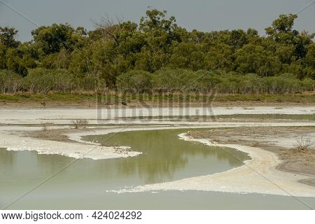 The Salt Lake Of Larnaca In Cyprus