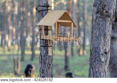 Wooden Homemade Bird Feeder In The Summer Morning Forest. The Bird Feeder Made Of Wood And Plywood I