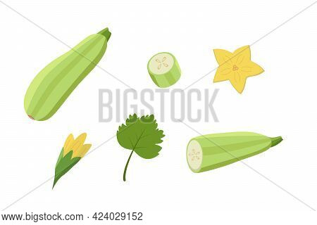 Zucchini Whole And Cut, Zucchini Flowers And Leaf. Vector Illustration Of Vegetables, A Set Of Harve