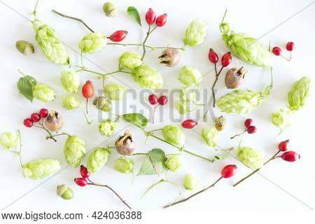 Autumn Floral Composition. Pattern Made Of Autumn Fruits On White Background. Autumn, Fall Concept.