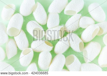 Many White Silkworm Cocoons Shell For Production Of Silk Thread And Silk Fabric