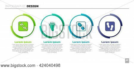 Set Goose Paw Footprint, Bear, Human Footprints Shoes And . Business Infographic Template. Vector