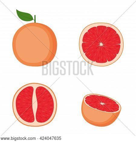 Grapefruit, Whole Fruit, Half, Slice, Vector Illustration