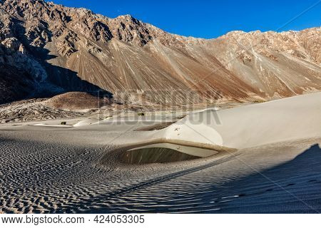 Sand dunes of small desert in Nubra valley in Himalayas. Hunder, Nubra valley, Ladakh
