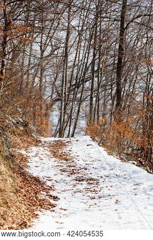 Snow Covered Footpath.  A Snow Covered Footpath On Kapuzinerberg, A Hill In Salzburg, Austria.