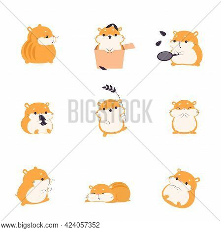Cute Hamster Eating Seeds Set, Adorable Funny Pet Animal Characters Cartoon Vector Illustration