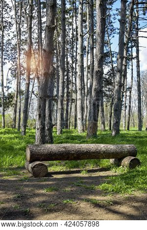 Bench Made Of Logs On Background Of Pine Forest. Blue Sky With White Clouds And Sun Glare Shines Thr
