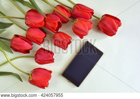 Fresh Red Tulips And Smartphone On Light Green Background. Top View. Close-up. Copy Space. Selective