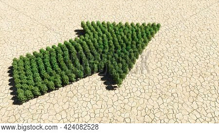 Concept or conceptual group of green forest tree on dry ground background, road sign. 3d illustration metaphor for navigation, strategy, journey, guidance, choice and decision