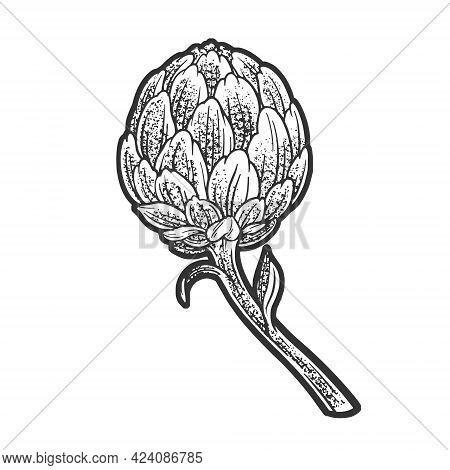 Artichoke Plant Line Art Sketch Engraving Vector Illustration. T-shirt Apparel Print Design. Scratch