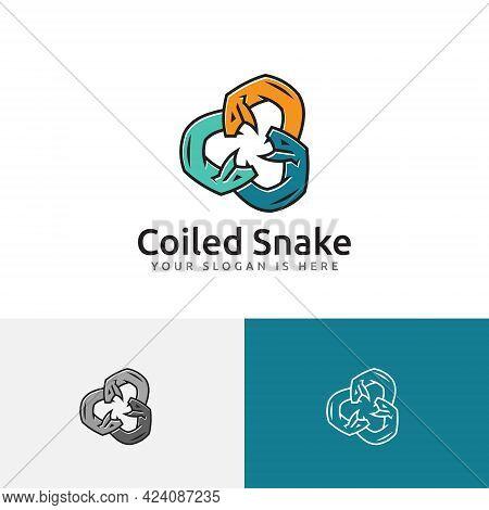 Coiled Snake Serpent Fangs Dangerous Wild Animal Group Team Logo