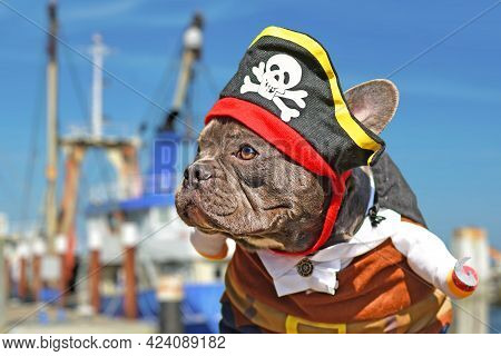 French Bulldog Dog Dressed Up In Pirate Costume With Hat And Hook Arm