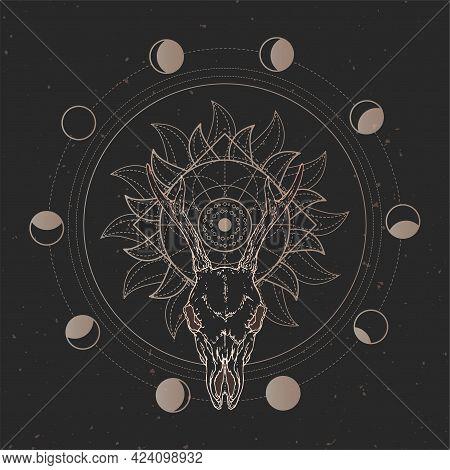 Vector Illustration With Hand Drawn Roe Deer Skull And Sacred Geometric Symbol On Black Vintage Back
