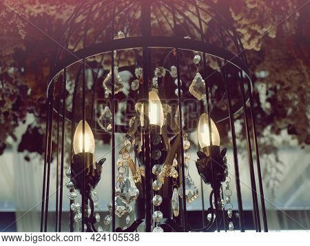 Expensive Lamps Adorned With Expensive Ornaments Shone Brightly.