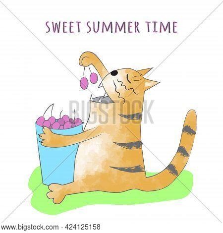 Funny Ginger Tabby Cat Eats Cherries From A Blue Bucket. Sweet Summer Time. Cartoon Vector Illustrat