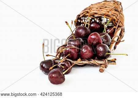 Overturned Wicker Basket With Ripe Sweet Cherries Spilling Out Of It On White Background