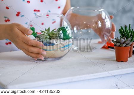 A Florist Is Working On A Terrarium With Succulents And Cacti. Home Interior Decor With Fresh Flower
