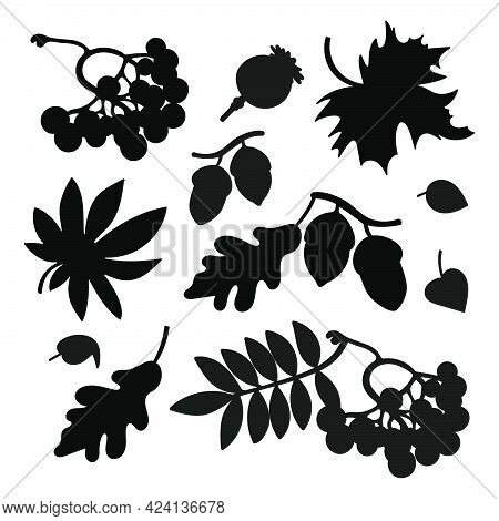 Autumn Symbols For Plotter Collection Of Monochrome Contours Of Forest Elements With Leaves Mushroom