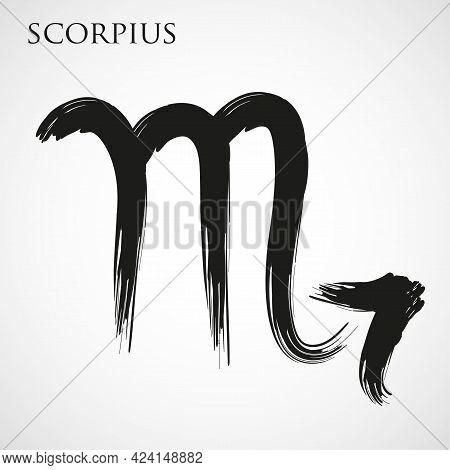 Scorpion Zodiac Symbol Isolated On White Background. Brush Stroke Scorpion Zodiac Sign. Hand Drawn V