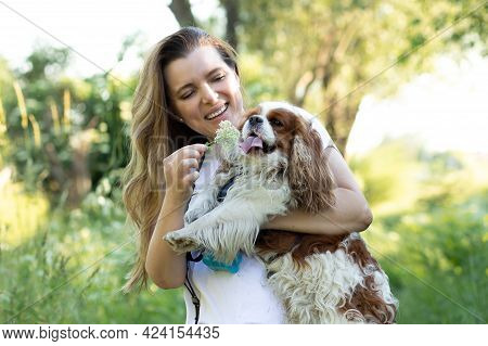 Positive Woman Holding Friendly King Charles Spaniel Dog In Hands Enjoying Happy Moments Together Wh