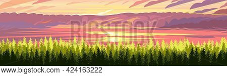 Pine Forest. Silhouettes Of Coniferous Trees. Wild Landscape Horizontally. Red Sunset. Nice Panorami
