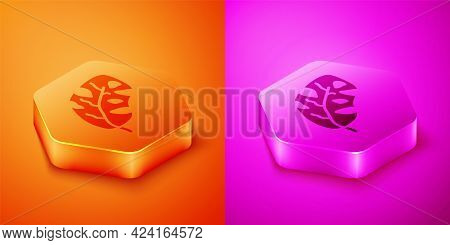 Isometric Tropical Leaves Of Palm Tree Icon Isolated On Orange And Pink Background. Hexagon Button.