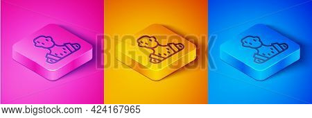 Isometric Line High Human Body Temperature Or Get Fever Icon Isolated On Pink And Orange, Blue Backg