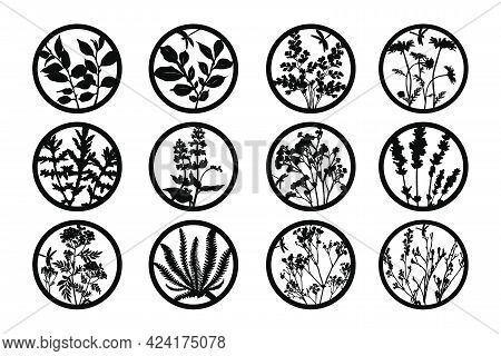 Template For Impressing And Cutting On Cutting Machines. Silhouettes Of Leaves, Flowers And Herbs In