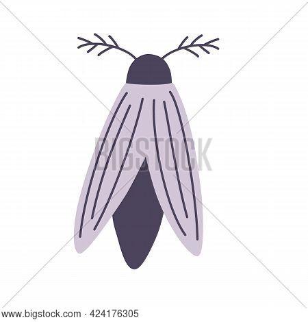 Night Moth. Element For Halloween. Magic, Occult, Greeting Card, Print, Poster. Vector Cartoon Illus