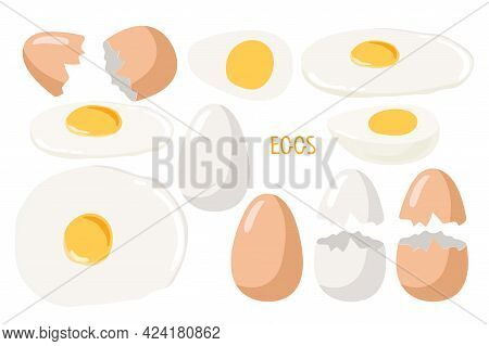 Eggs. Whole And Broken, Boiled And Fried Eggs, Cracked Shell. Vector Food Ingredient Isolated On Whi