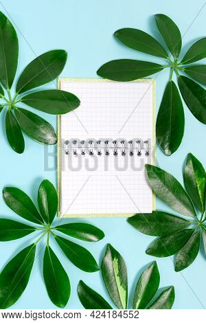 Creating Nature Theme Blog Content, Preventing Environmental Loss, Displaying Renewable Materials, C