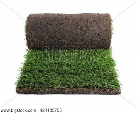 Rolled Sod With Grass On White Background