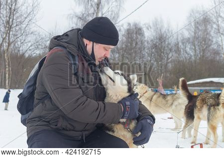 A Man In Winter Casual Clothes Gently Hugs A Husky Dog In Winter And Looks Into The Eyes Of A Devote