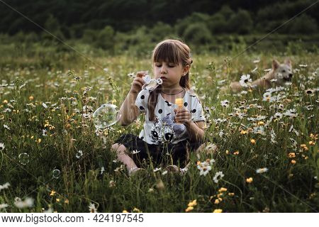 Happy Childhood In Nature Among Flowers. Chamomile Field And Child At Sunset. Little Girl In Dress S