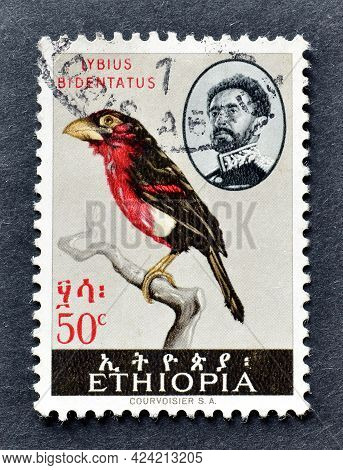 Cancelled Postage Stamp Printed By Ethiopia, That Shows Double-toothed Barbet (lybius Bidentatus), C