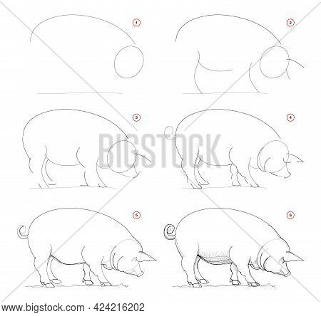 How To Draw Sketch Of Imaginary Domestic Pig. Creation Step By Step Pencil Drawing. Education For Ar
