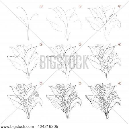 How To Draw Beautiful Bouquet Of Lily Of The Valley Flowers. Creation Step By Step Pencil Drawing. E