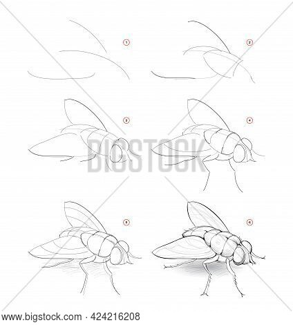 How To Draw Sketch Of Fly. Creation Step By Step Pencil Drawing Of Imaginary Insect. Education For A
