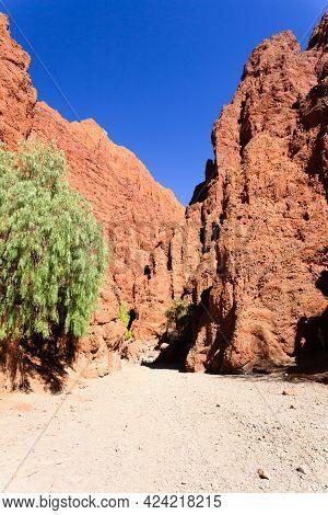 Bolivian Canyon Near Tupiza,bolivia.quebrada De Palmira,canyon Del Inca