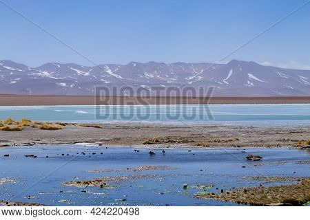 Bolivian Lagoon Landscape, Bolivia. Andean Plateau View