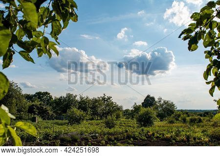 Blue Sky And Clouds Framed By Dark Green Texture Background Of Rural Landscape