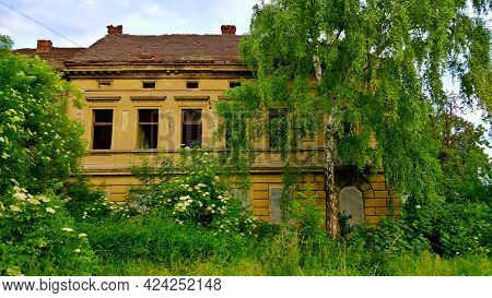 Prague, Czech Republic - June 15, 2021: Old Dilapidated Yellow Municipal House Completely Overgrown