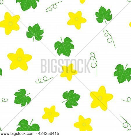 Seamless Pattern With Cucumber Or Kiwano Leaves And Flowers Isolated On White Background. Vector Ill