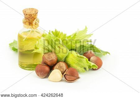 Glass Bottle Of Hazelnut Oil Isolated On White Background With Green Fresh Hazelnuts