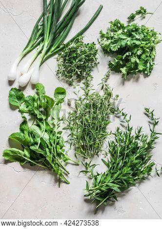 Aromatic Garden Herbs - Rosemary, Coriander, Green Onion, Tarragon, Thyme, Arugula, Lettuce On A Lig