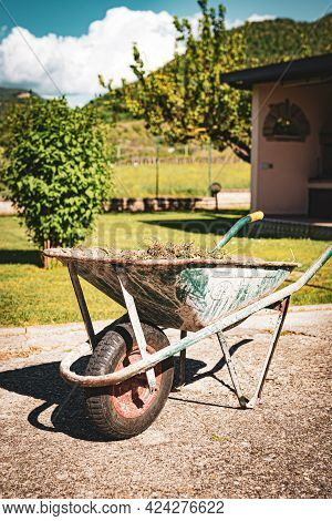 Garden Wheelbarrow Full Of Dry Cut Grass And Branches In The Garden Under The Sunlight, Working Tool