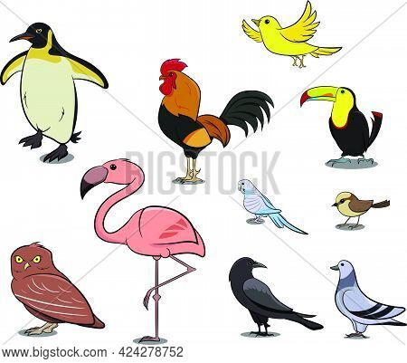 Flamingo Standing On 1 Leg. Pink Bird. Birds From Different Parts Of World. Common Birds. Bird Icon