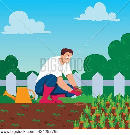Illustration Of Man Growing Vegetables In His Garden.
