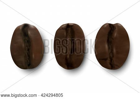 Vector 3d Realistic Coffee Beans. Textured Roasted Coffee Bean Icon Set Closeup Isolated On White Ba